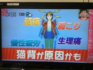 日本人の9割が当てはまる猫背!?NHKでも猫背特集