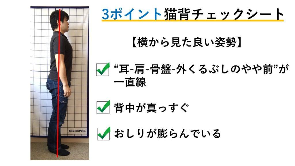猫背矯正におすすめのトレーニング5ステップ紹介!|猫背姿勢チェックシート付