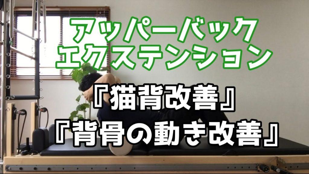 【動画解説】アッパーバックエクステンション|ピラティスエクササイズの紹介
